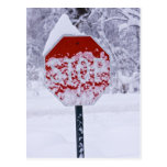 Stop Snowing! Post Cards