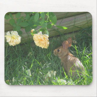 Stopping to smell the Roses Mouse Pad