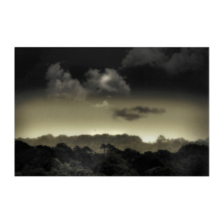 Stored in the Cloud Acrylic Print