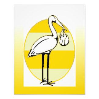 Stork and Baby Bundle Photo