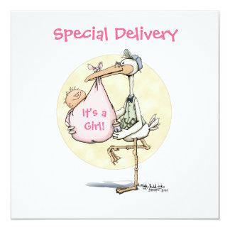 Stork - New Baby GIrl Custom Invitations