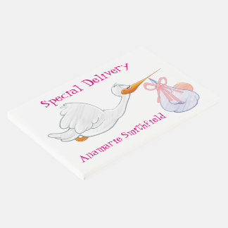 """Stork """"Special Delivery"""" New Baby Guest Book"""