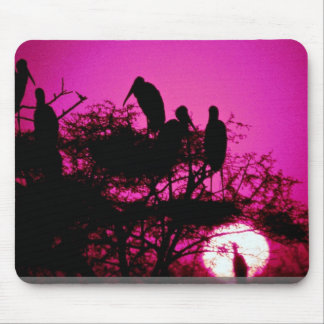 Storks at the nest, India Mouse Pads