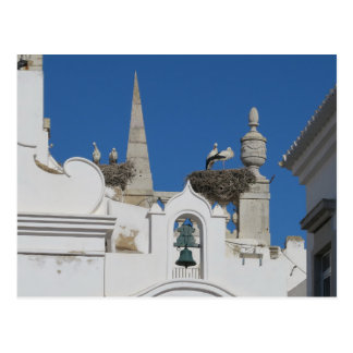 storks build nests on the church in the old town postcard