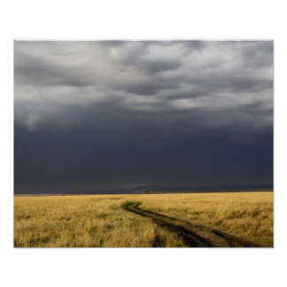 Storm clouds and road across gassy plains of the poster