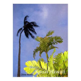 Storm Coming - Kauai, Hawaii Postcard