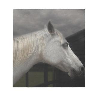Storm horse notepad