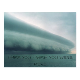 Storm, I MISS YOU --WISH YOU WERE HERE Postcard