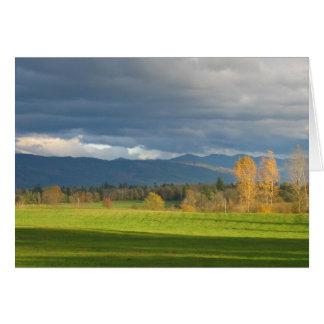 StormLit Meadow Card