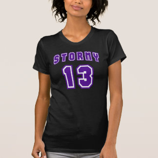 Stormy 13 T-Shirt