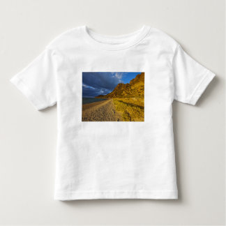 Stormy light on Isla Carmen in the Gulf of Toddler T-Shirt