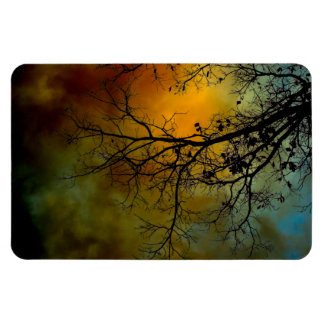 Stormy morning with tree magnet