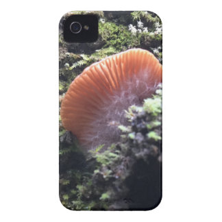 Stormy Mycelia Burst Mushroom iPhone 4 Case-Mate Case