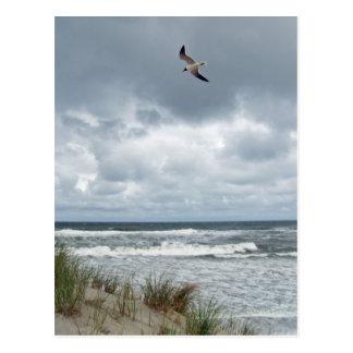 Stormy Sea Postcard