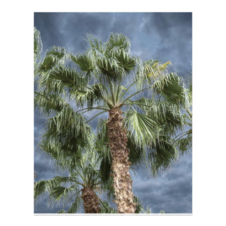 Stormy Sky Palm Trees Full Color Flyer
