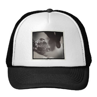 Stormy the Dalmatian Trucker Hat