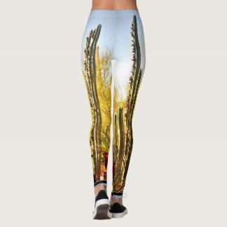 Stove Pipe Cactus in Bloom Women's Leggings