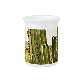Stove Pipe Cactus Porcelain Pitcher