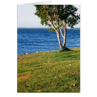 Stradbroke Island Greeting Card