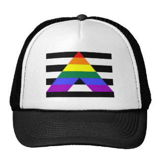 Straight Ally Flag LGBT Supporter Cap