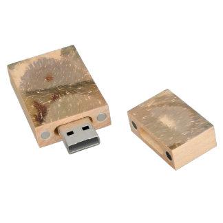 Strange food edited photo wood USB 2.0 flash drive