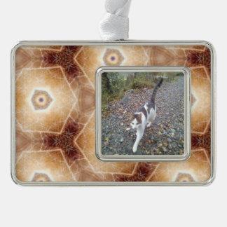 Strange hexagon shapes pattern silver plated framed ornament
