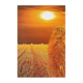 Straw Bales Sunset Acrylic Print