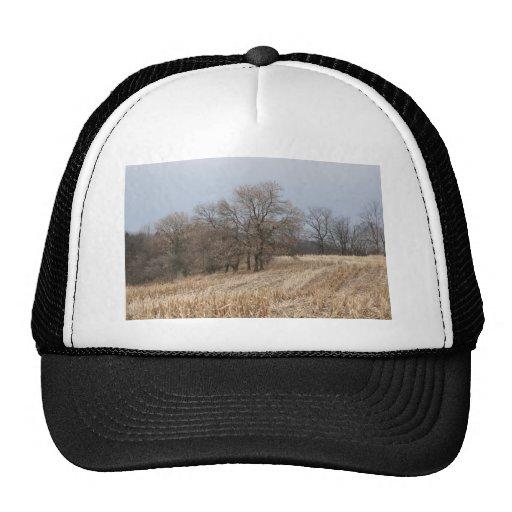Straw Fields Ball Cap Trucker Hat