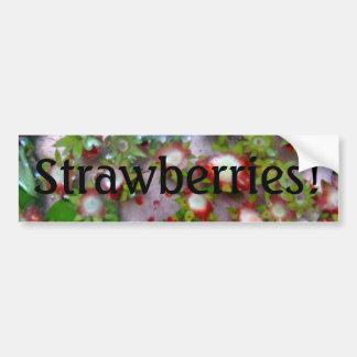 """""""Strawberries!"""" Bumper Sticker"""