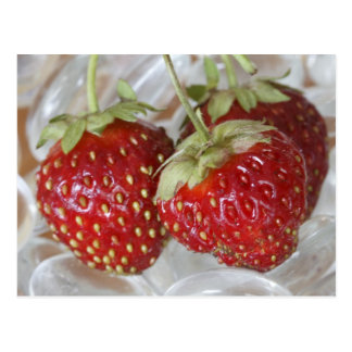 Strawberries Postcard
