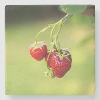 Strawberries Stone Coaster