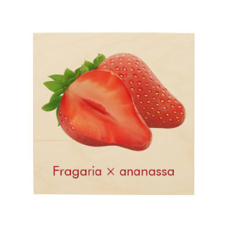 strawberries wood kitchen art