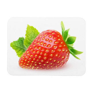 Strawberry and mint magnet