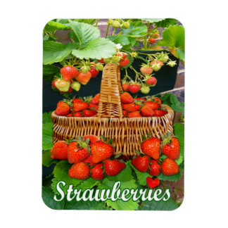 Strawberry Basket  ~ Flexi Magnet