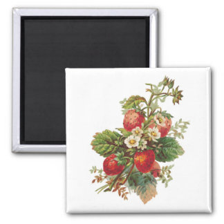 Strawberry Blooms Magnets