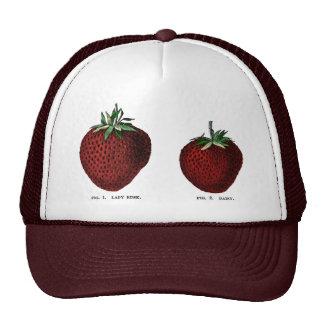 Strawberry Botanicals Mesh Hat