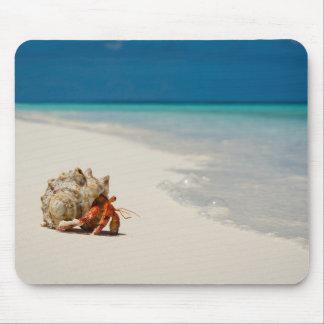 Strawberry Hermit Crab   Coenobita Perlatus Mouse Pad