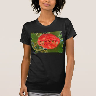 STRAWBERRY   MIDNIGHT TSHIRTS