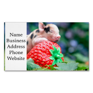 strawberry pig 	Magnetic business card