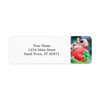 strawberry pig return address label