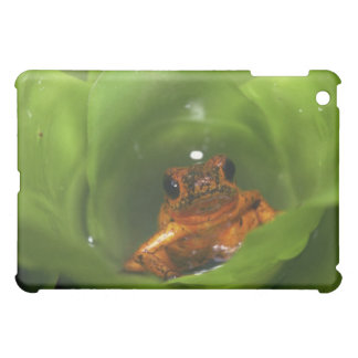 Strawberry poison frog hiding in leaves iPad mini cover