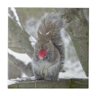 Strawberry squirrel ceramic tile