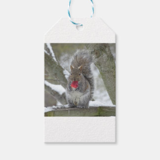 Strawberry squirrel gift tags