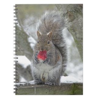 Strawberry squirrel notebook
