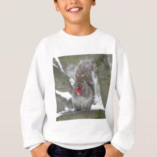 Strawberry squirrel sweatshirt