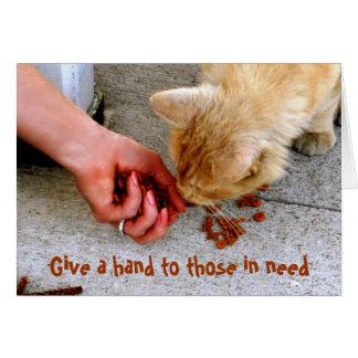 Stray Cat Hawaii Shelter Pets Card