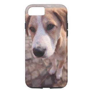 Stray dog iPhone 8/7 case