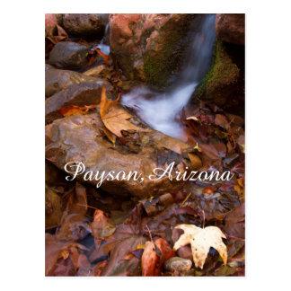 Stream in Payson,Arizona Postcard