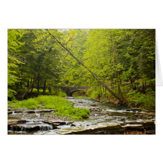 Stream Landscape Greeting Card