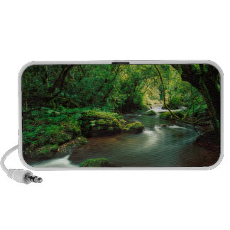 Stream Near Bridal Veil Falls, Sabie Laptop Speakers